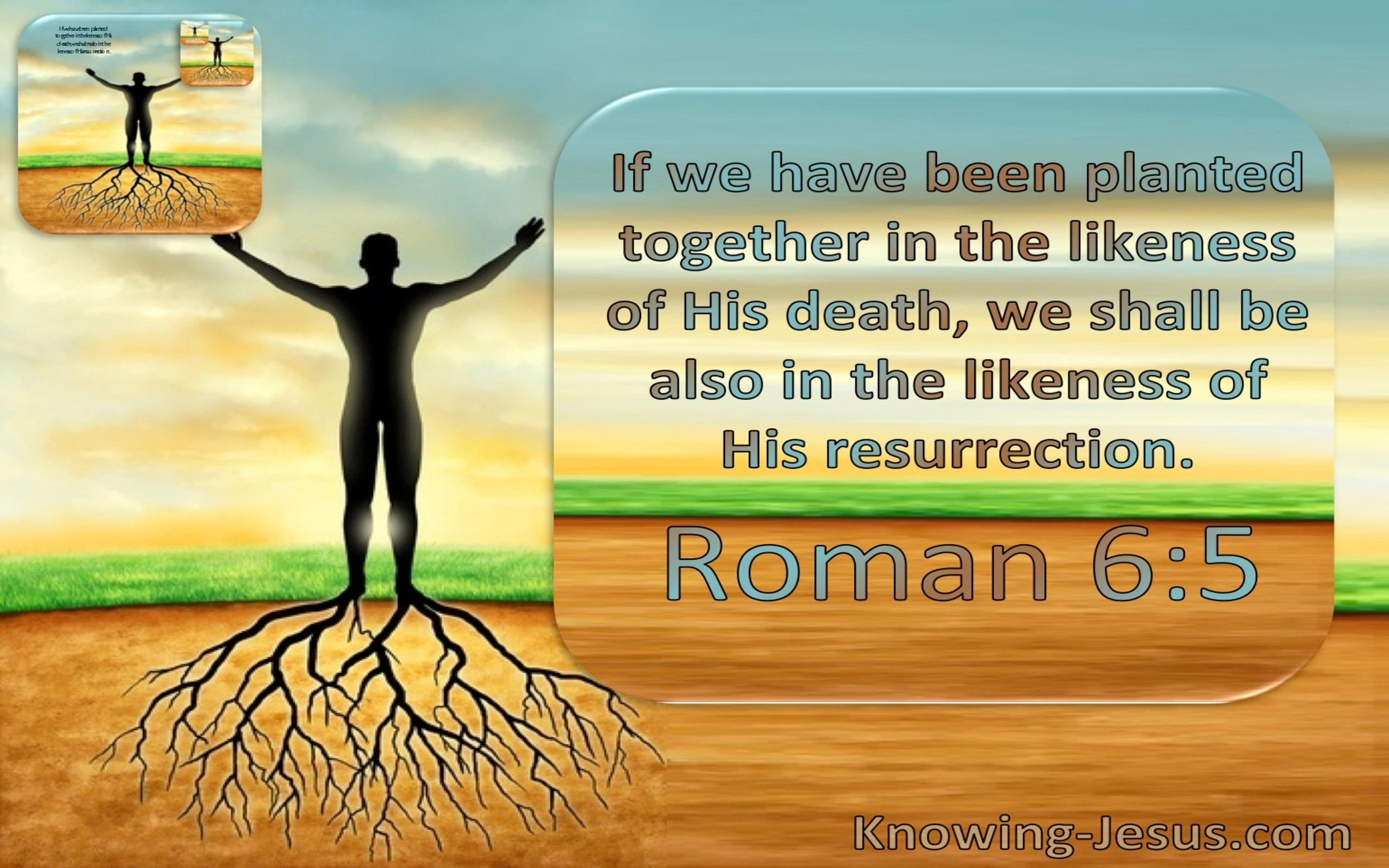 Romans 6:5 We Have Been Planted Together In The Likeness Of His Death And Resurrection (windows)01:17