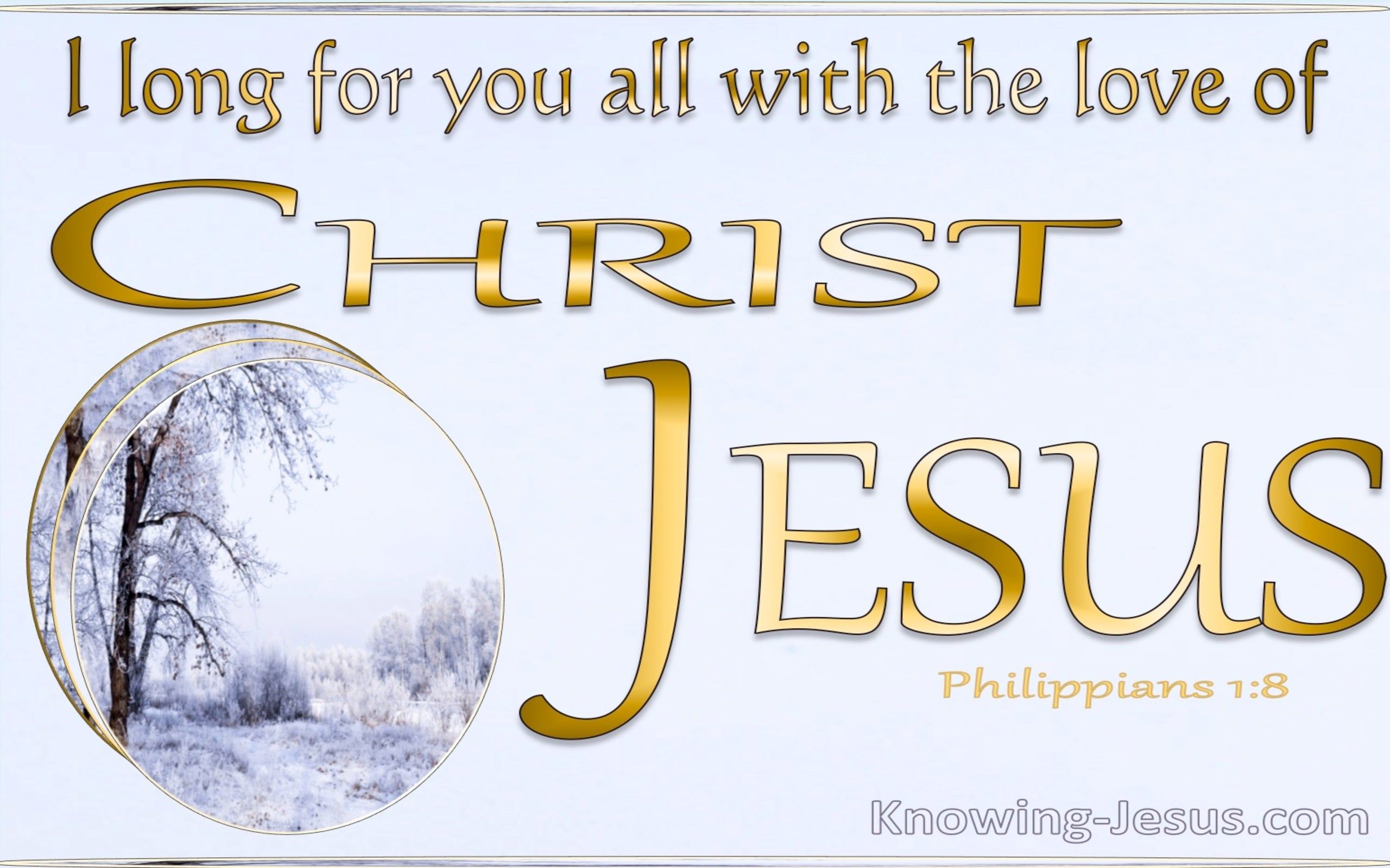 Philippians 1:8 God Is My Witness (gold)