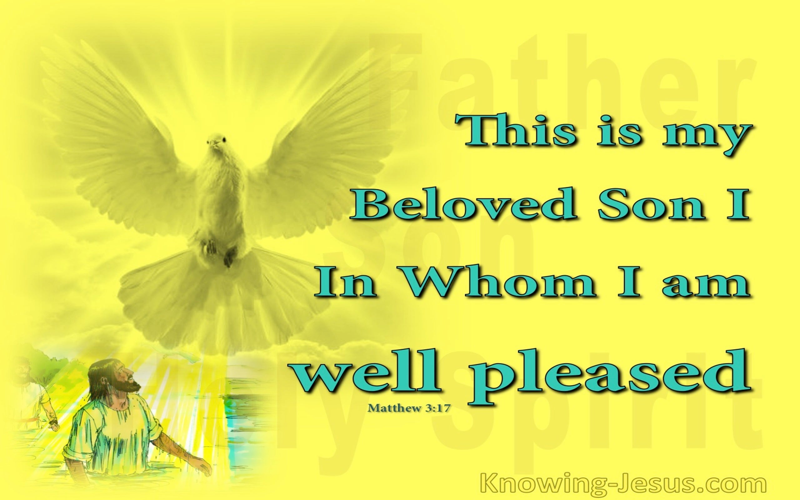 A Beautiful Picture (devotional) (yellow) - Matthew 3:17