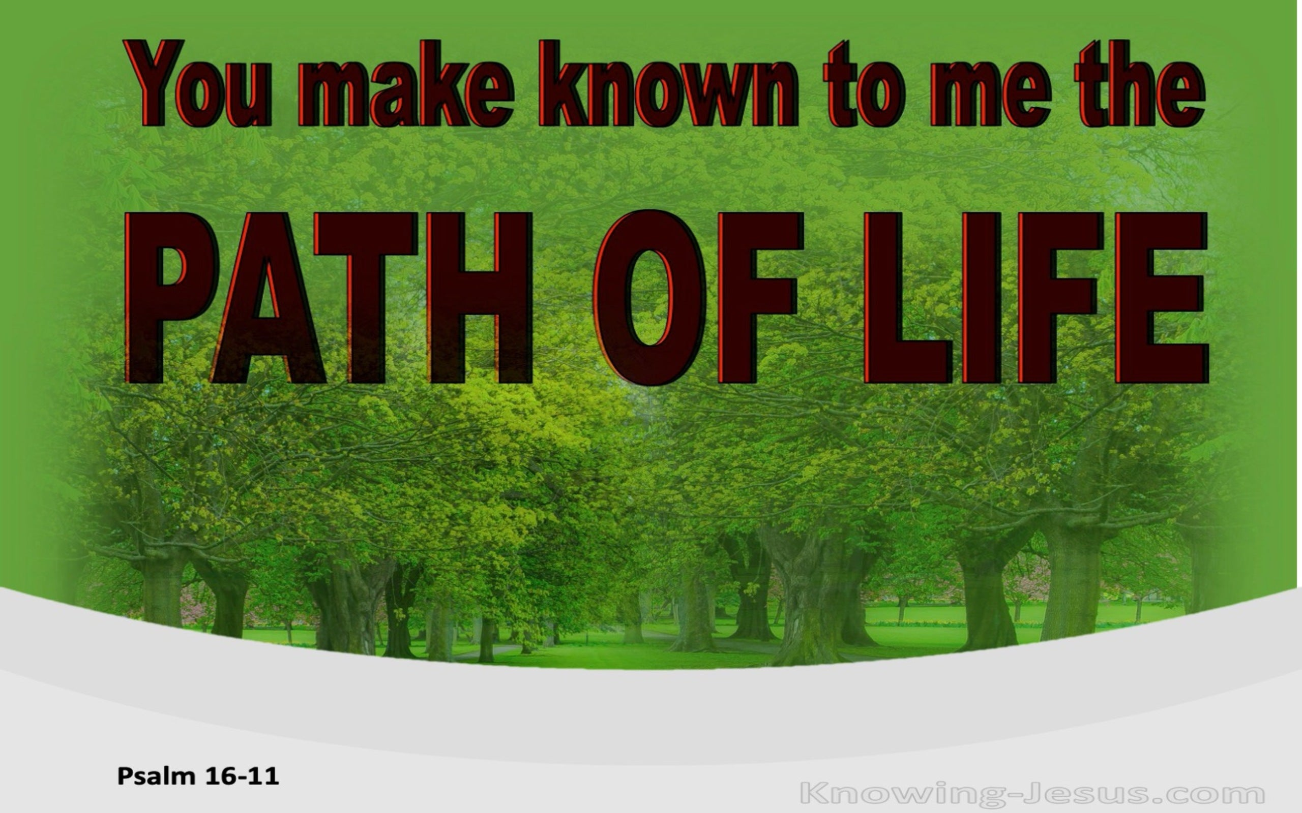 Psalm 16:11 You Make Known To Me The Path Of Life (red)