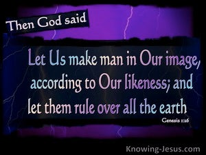 Genesis 1 26 Then God Said Quot Let Us Make Man In Our Image