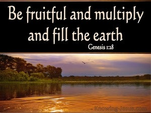 Genesis 1:28 Be Fruitful And Multiply black
