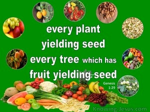 Genesis 1:29 Every Plant, Tree And Fruit Yielding Seed green