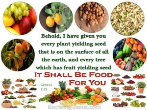 Genesis 1:29 It Shall Be Food For You white