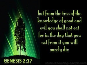 Genesis 2:17 Tree Of Knowledge Of Good And Evil green