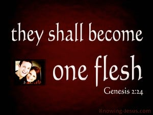 Genesis 2:24 Joined Together As One Flesh (white)