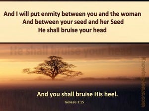 Genesis 3:15 Emnity Between Her Seed And Your Seed (brown)
