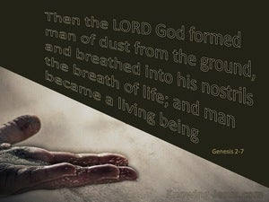 Genesis 2:7 God Formed Man From The Dust (gold)