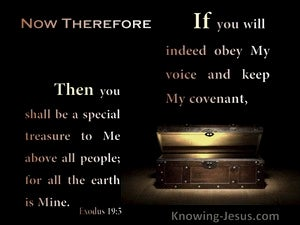 Exodus 19:5 If You Obey My Voice Then You Will Be A Special treasure To Me (black)