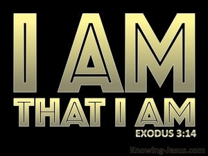 Exodus 3:14 God Said I AM That I AM (black)