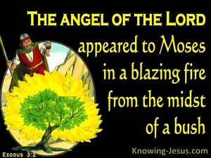 Exodus 3:2 The Angel Of The Lord Appeared To Moses In The Burning Bush (black)