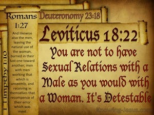 Leviticus 18:22 You Must Not Have Sex Relations With A Male red