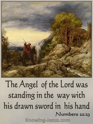 Numbers 22:23 The Angel Of The Lord Was Satnding In The Way With A Drawn Sword (gray)