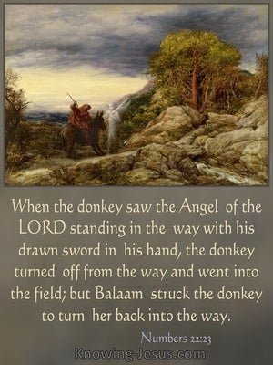 Numbers 22:23 When The Donkey Saw The Angel Of the Lord He Turnee Off From The Way (brown)