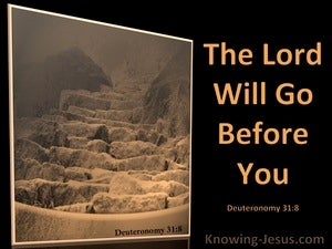 Deuteronomy 31:8 The Lord Go Before You (black)
