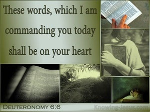 Deuteronomy 6:6 Keep These Words On Your Heart sage