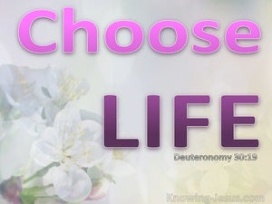 Deuteronomy 30:19 Choose Life Or Death (pink)