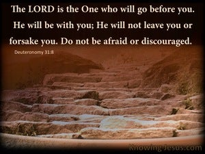 Deuteronomy 31:8 The Lord Is The One Who Will Go Before You (brown)