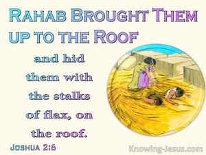 Joshua 2:6 She Hid The Spies In Stalks Of Flax (beige)