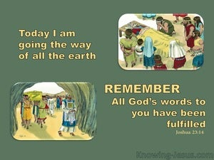 Joshua 23:14  God's Word Has Been Fulfilled (sage)
