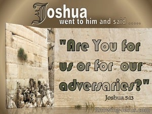 Joshua 5:13 Are Your For Us (brown)