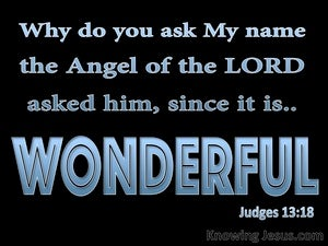 Judges 13:18 His Name Is Wonderful (blue)