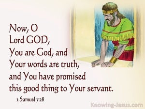 2 Samuel 7:28 You Are God Your Words Are Truth (pink)