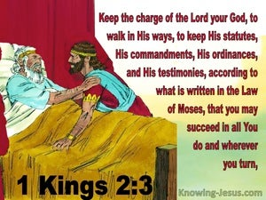 1 Kings 2:3 Walk In His Ways (red)