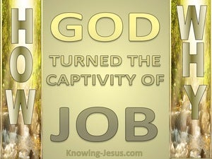 Have You Considered How And Why  (devotional) (gold) - Job 42:10