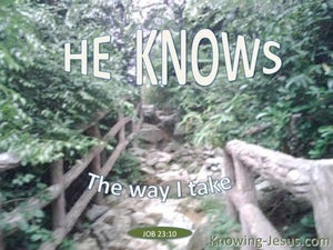 Job 23:10 He Knows The Way I Take (green)
