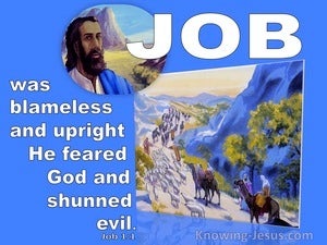 Job 1:1 There Was A Man From Uz Whose Name Was Job Who Was Blameless (blue)