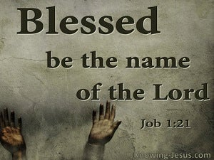 Job 1:21 The Lord Gave And Has Taken Away (sage)