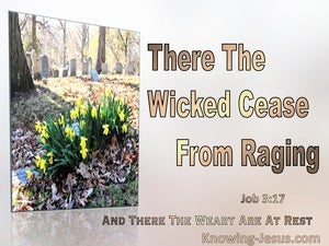 Job 3:17 The Wicked Cease Raging. The Weary Are At Rest (brown)