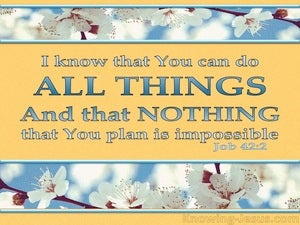 Job 42:2 You Can Do All Things (yellow)