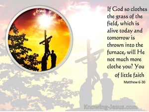 Matthew 6:30 If God So Clothe The Grass Of The Field (orange)