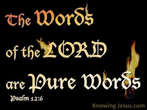 Psalm 12:6 The Words Of The Lord Are Pure black