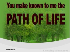 Psalm 16:11 You Make Known The Path Of Life (red)