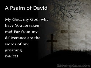 Psalm 22:1 My God  My God  Why Have You Forsaken Me (gray)