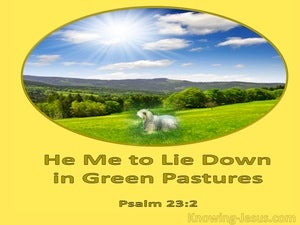 Psalm 23:2 He Makes Me Lie Down in Green Pastures (yellow)