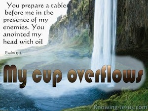 Psalm 23:5 My Cup Overflows blue
