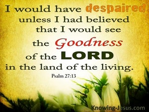 Psalm 27:13 The Goodness Of The Lord (orange)