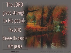 Psalm 29:11 The Lord Gives Strength To His People gray