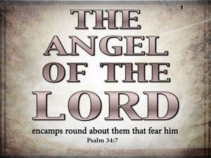 Psalm 34:7 The Angel Of The Lord Encamps pink