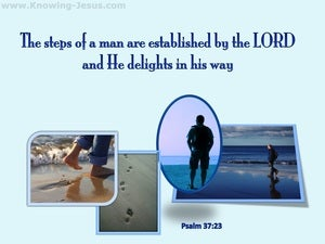 Psalm 37:23 The Lord Establishes The Steps Of A Man blue
