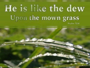 Psalm 72:6 He Is Like The Dew On The Mown Grass green