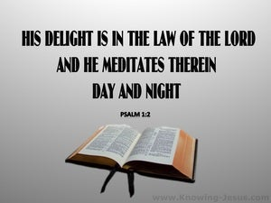 Psalm 1:2 He Delights In The Law Of The Lord (gray)