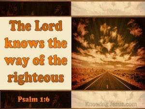 Psalm 1:6 The Lord Knows The Way Of The Righteous (orange)
