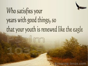 Psalm 103:5 He Satisfies Your Year With Good Things (brown)