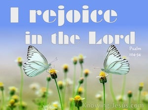 Psalm 104:34 I Rejoice In The Lord (white)