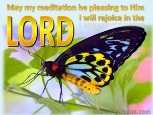 Psalm 104:34 I Will Rejoice In The Lord (gold)